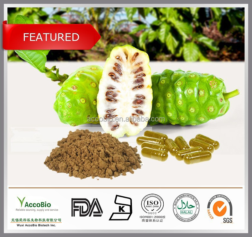 Top quality Pure Noni fruit extract powder, Noni price, Morinda Citrifolia extract 4:1 10:1 20:1