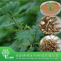 Low price CAS: 83-46-5 Beta Sitosterol 40% Stinging Nettle Extract with top quality