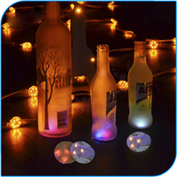 Alibaba Best Selling Crazy Party Led Bottle Lights