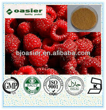 Free sample Red Raspberry seed fruit Extract