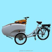 hot sale new model pedal electric tricycle cargo