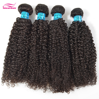 wholesale brazilian hair extensions south africa,afro kinky curly braiding hair,soft kinky twists hair