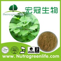 Natural ginkgo biloba leaf extract powder,24/6 flavoglycosides&Terpene Lactones,memory enhancement gingko biloba leaf extract
