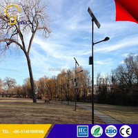 made-in-china Applied in More than 50 Countries 5 years Warranty sun cell lamp