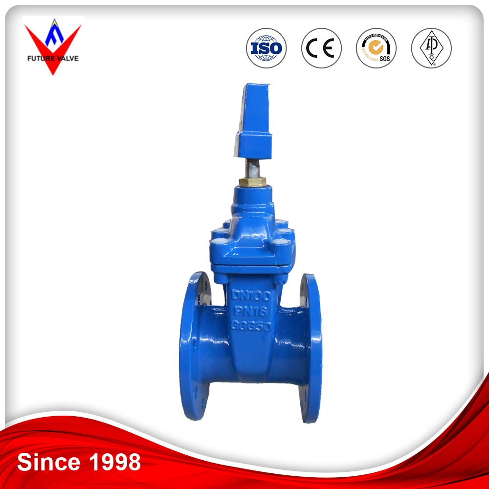 Ductile iron resilient seated 6 inch water Gate Valve PN16