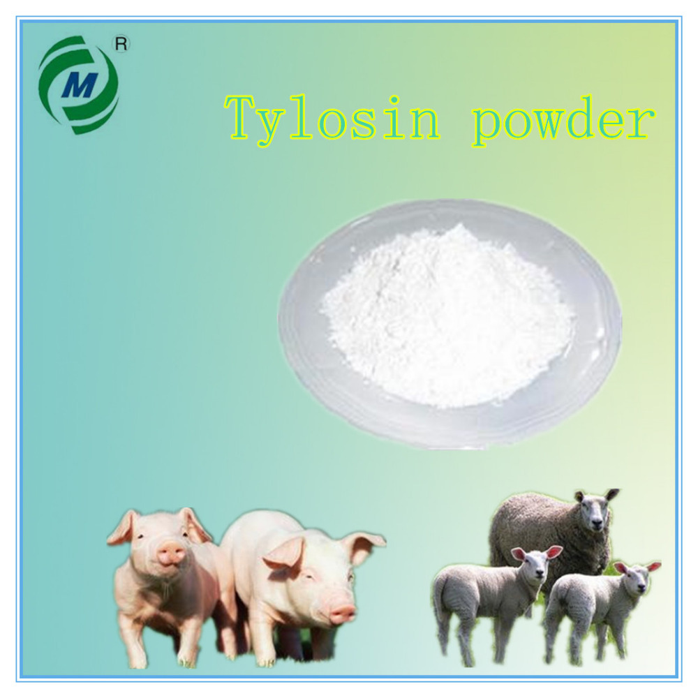 Best price feed grade Tylosin Tartrate Animal Antibiotic animal fat powder