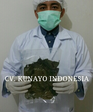 Dried Soursop Leaves with Vacuum Packaging (soursop-leaves.com)