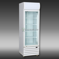 200 - 1600 LITERS HOT SALES SINGLE GLASS DOOR ENERGY SAVING DISPLAY COOLERS