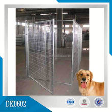 Chain Link Dog Kennel With Flat Roof