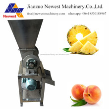 Vegetable seed processing machine /juice extracting machine /pineapple squeezer machine