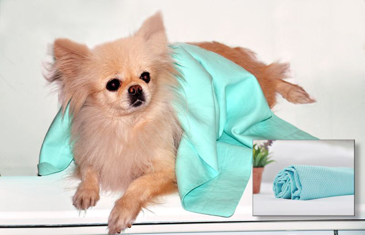 wholesale PVA super absorbent drying pet cooling towel