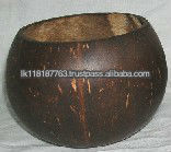 Polished Coconut Shells