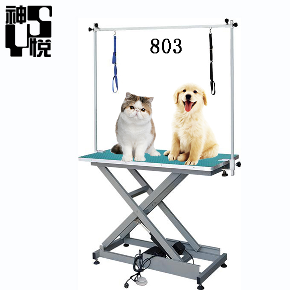 Ce Surgical Instrument Animal Surgical economical Electric Hydraulic grooming table with cabinet