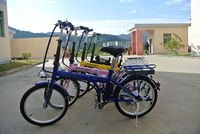 2014 A2 giant assistant electric bicycle