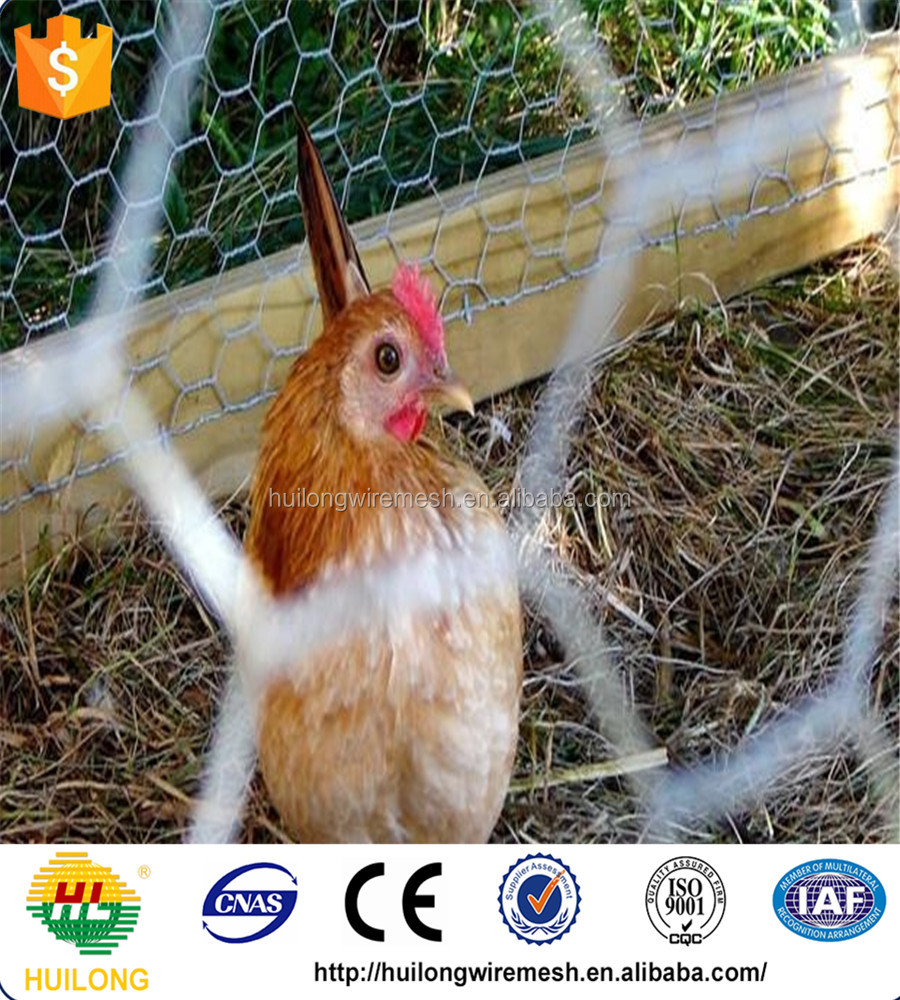 IDEAL BIRD/RABBIT /CHICKEN PROTECTION HEXAGONAL MESH