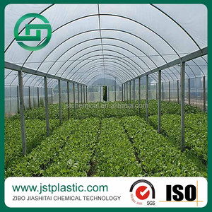 Plastic Film for Greenhouse/LDPE Agricultural Film for Greenhouse,China Manufacturer