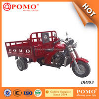 China Hot Sale Heavy Load Three Wheel Motorcycle For Adult (DH30.3)