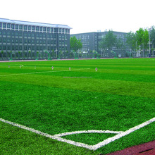 Artificial grass for cricket pitch