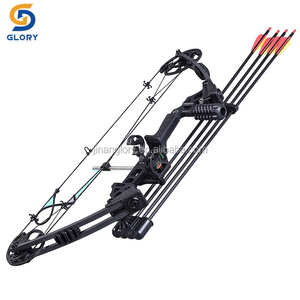 China 20-70Ibs adjustable archery hunting compound bows for adults