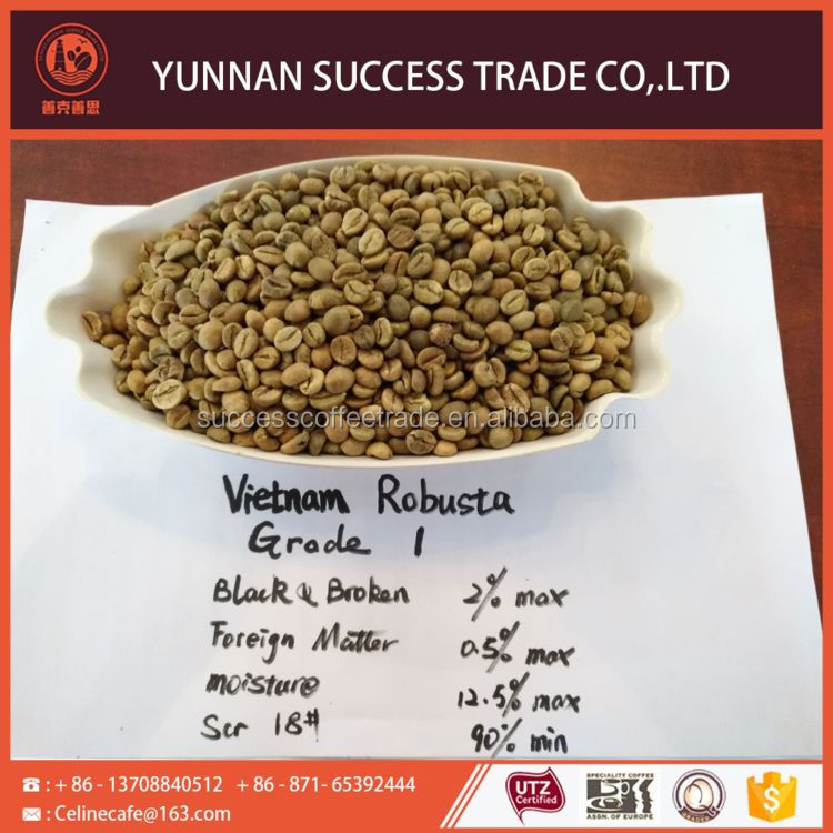 Factory super quality export green coffee bean