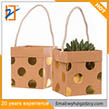 New Mini Small Kraft Paper Brown Polka Dot Wholesale Printing Paper Paper Gift Bags