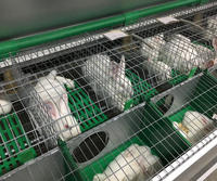 rabbit cage commercial rabbit cagesrabbit breeding cages Intensive culturing system of domestic rabbits