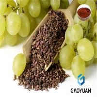 grape seed, grape seed extract powder, manufacture supply grape seed extarct powder polyphenols 95%