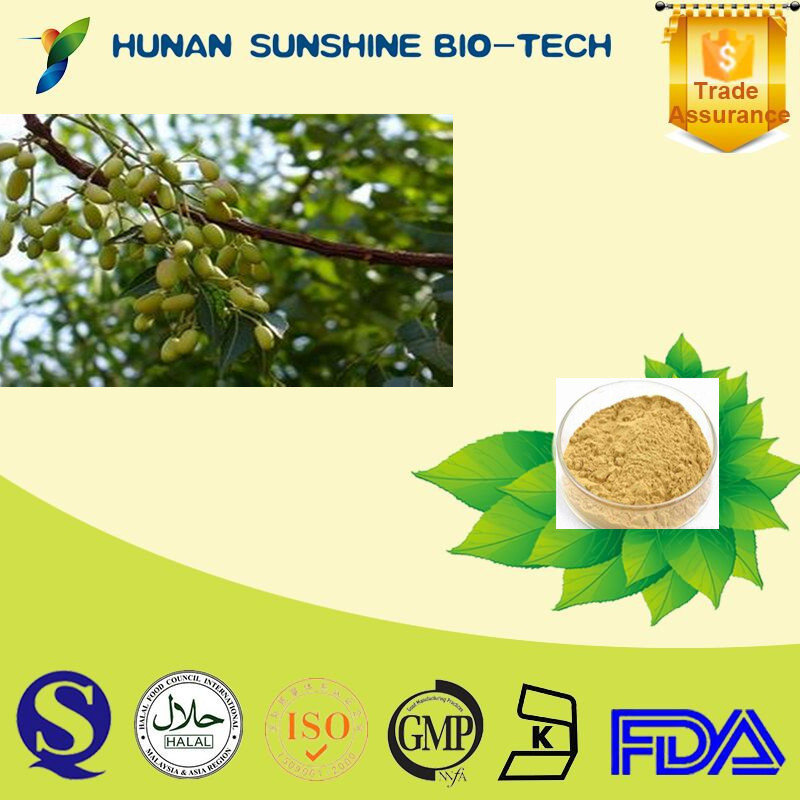 High pure Neem Seed Extract Powder azadirachtin for biotanical pesticide and Insecticide
