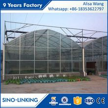 SINOLINK 8mm uv resistant plastic Polycarbonate sheet corrugated plastic greenhouse panels for sale