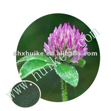 100% Natural Trifolium Pratense Extract Powder