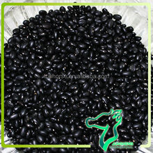 Black Matpe Beans, 2014 China Origin Black Beans Specification