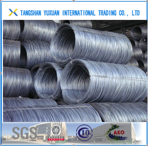 Prime Newly Hot Rolled Steel Wire Rod