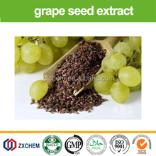 plant herb extract OPC 95% Grape Seed