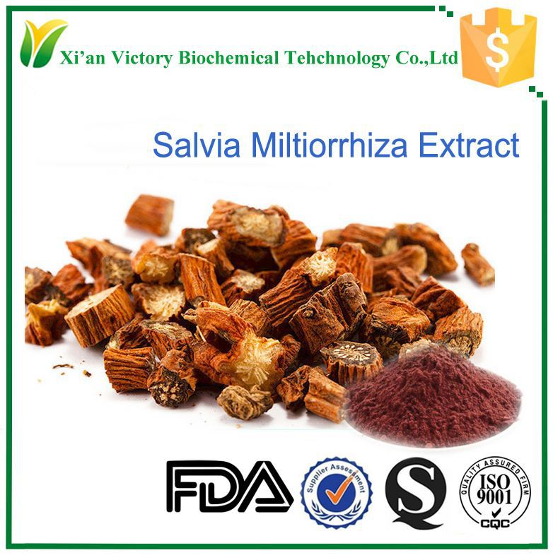 Free sample High quality and best price salvia officinalis extract