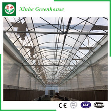 Farming Plastic Green Houses for Vegetables/Flowers