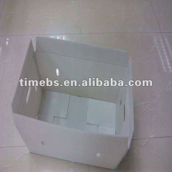 Folding corflute vegetable storage box