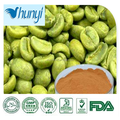 high quality Green coffee bean extract Powder factory direct sale and good price