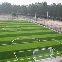 Bicolors 50MM Artificial Grass For Football Pitch