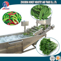2016 washing machinery multifunctional electrical vegetable&fruit washer