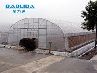 Agriculture Poly Tunnel Greenhouse