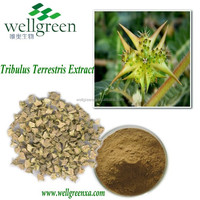 Tribulus Terrestris Extract helps to kidney,help bowels free move,strong waist and bones