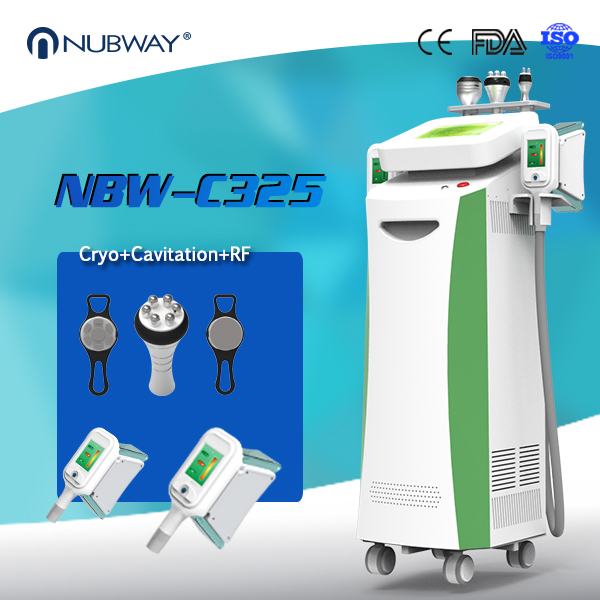Newest cryolipolysis slimming device digital therapy weight loss machine