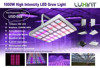 Large cover area 1000w full spectrum led grow lights for vertical farm
