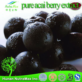 100% pure acai berry extract ,acai powder bulk ,Reliable Manufacturer -NutraMax