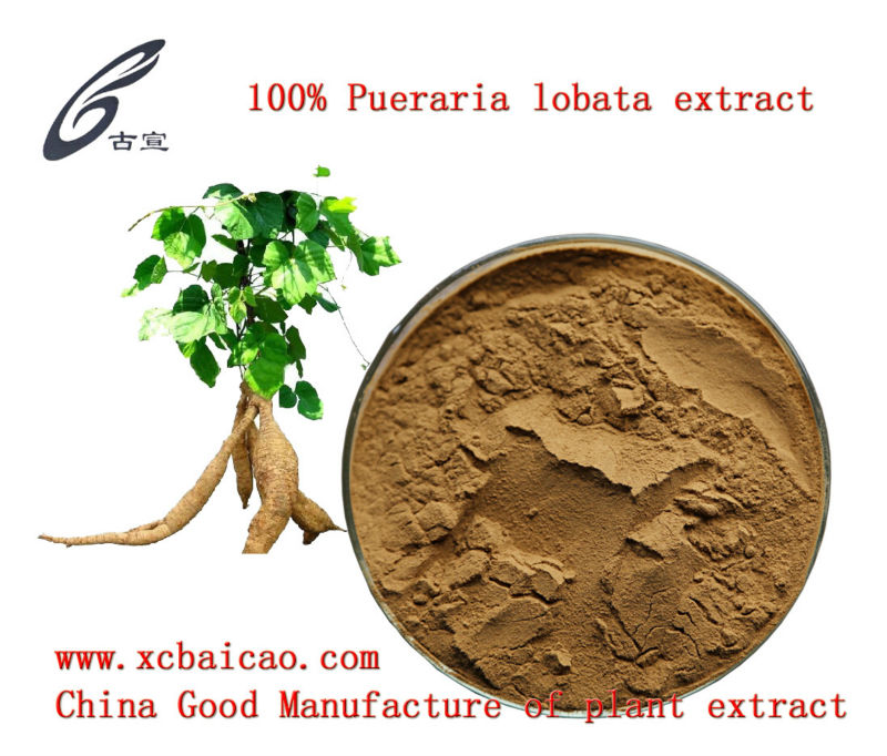 Chinese herbal extract pueraria mirifica extract