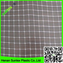 2*2 cm hole size white anti bird net/bird mist net/bird protection net for a cherry orchard