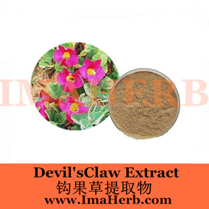 Halal Approved Natural devils claw extract harpagosides