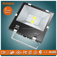 High-end bright outdoor waterproof Flood meanwell power supply led flood light circuit 120w