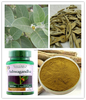 Factory 100% Natural Ashwagandha Extract/Withania Somnifera/Withanolides/phamaceuticals/food beverage additive/ healthcare