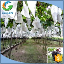 Agriculture Non woven Fabric Used For The Cultivation Of Vegetables And Fruits,Non Woven Flower Protection Bag